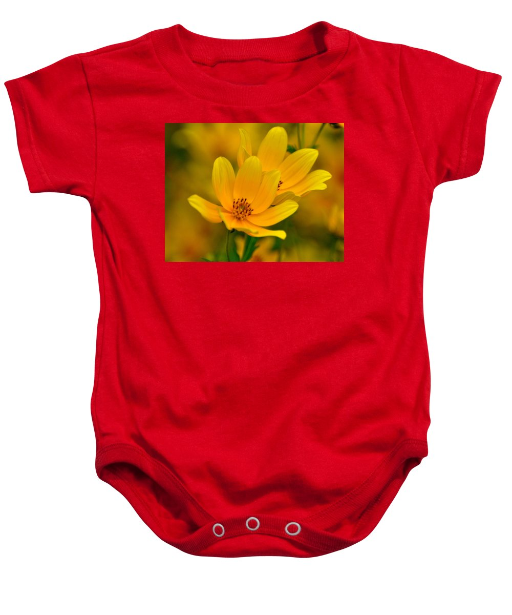 Wild Flower Baby Onesie featuring the photograph Yellow Blaze by Marty Koch