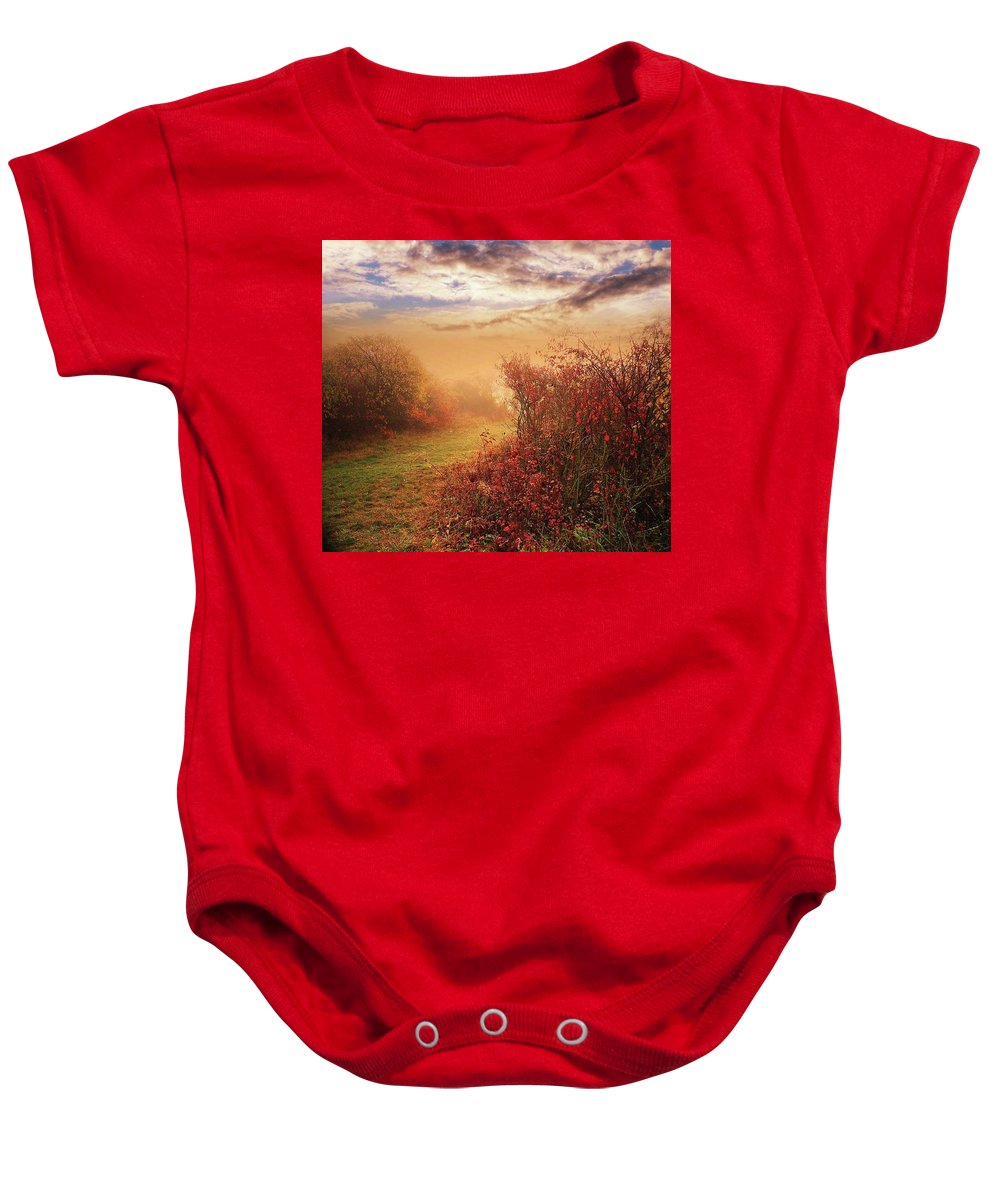 Autumn Baby Onesie featuring the photograph Autumn Leaves by Alex Lim
