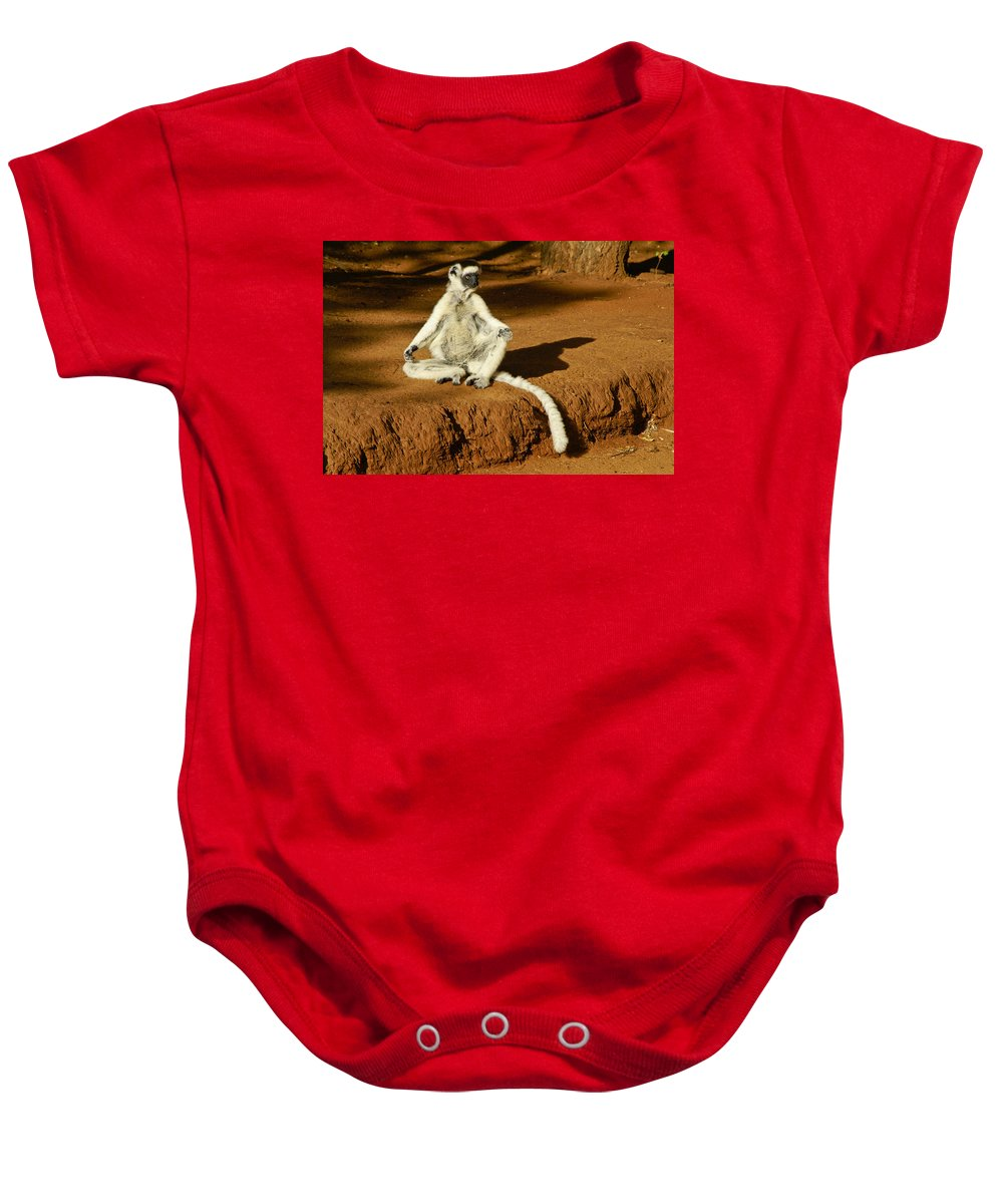 Madagascar Baby Onesie featuring the photograph Catching Rays by Michele Burgess