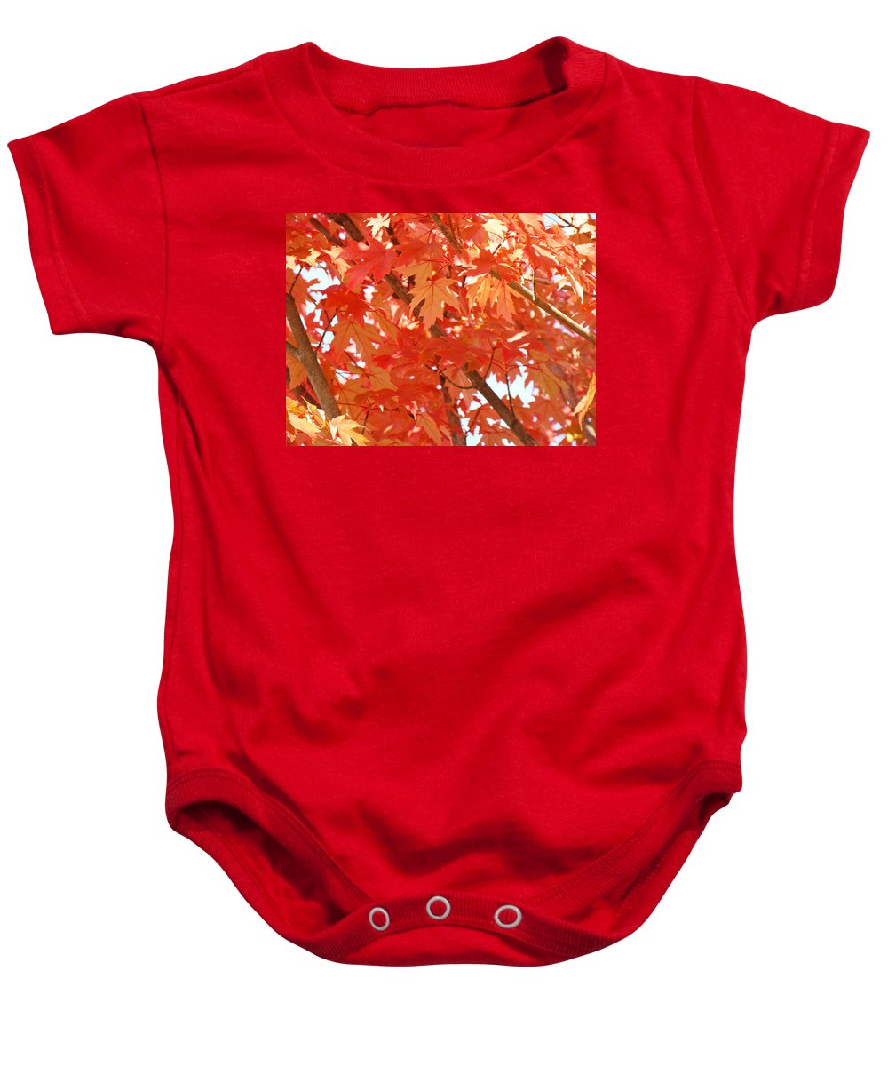 Autumn Baby Onesie featuring the photograph Fall Trees Colorful Autumn Leaves Art Baslee Troutman by Baslee Troutman