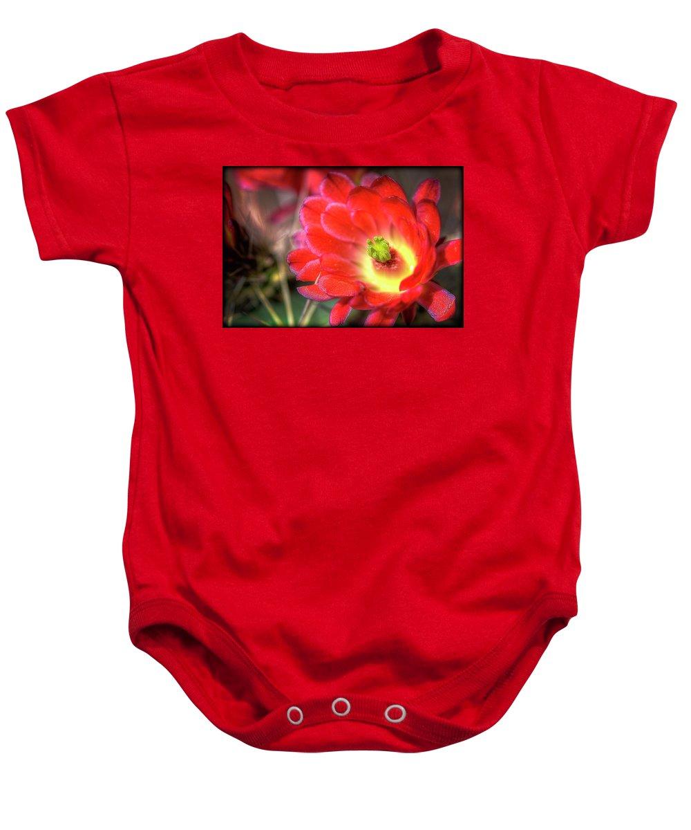 Arizona Baby Onesie featuring the photograph Red Hedgehog by Saija Lehtonen