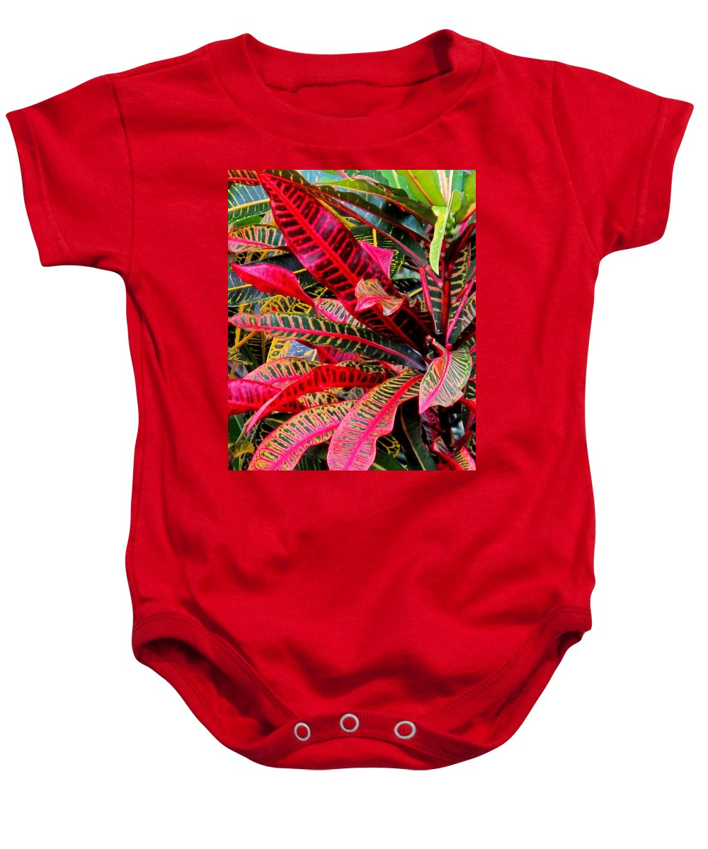 Red Baby Onesie featuring the photograph A Rich Composition by Ian MacDonald
