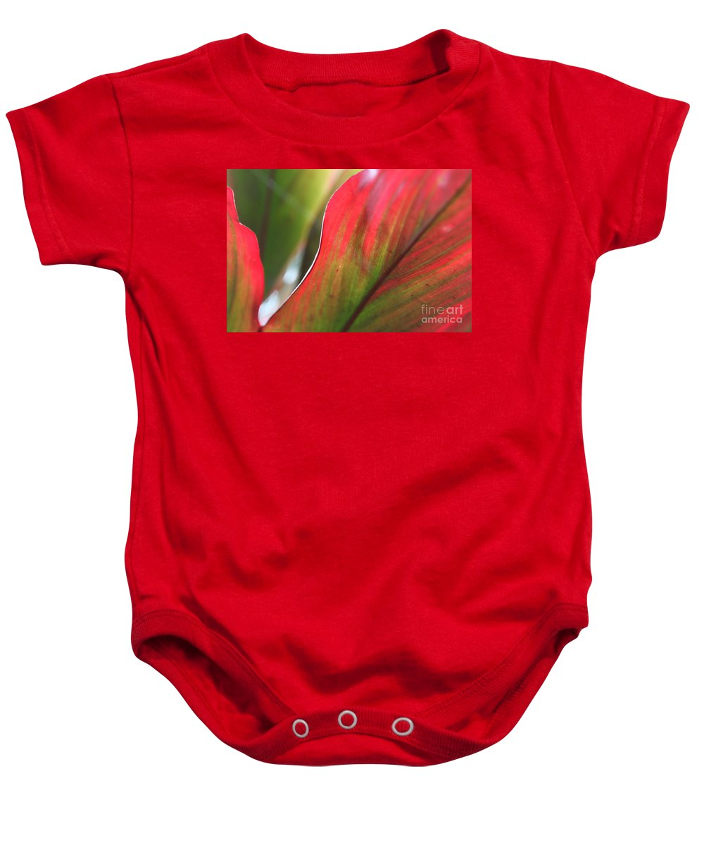 Pink Baby Onesie featuring the photograph Abstract Leaves by Nadine Rippelmeyer