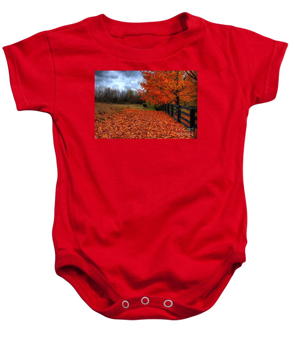 Autumn Baby Onesie featuring the photograph Autumn Leaves by Joe Ng