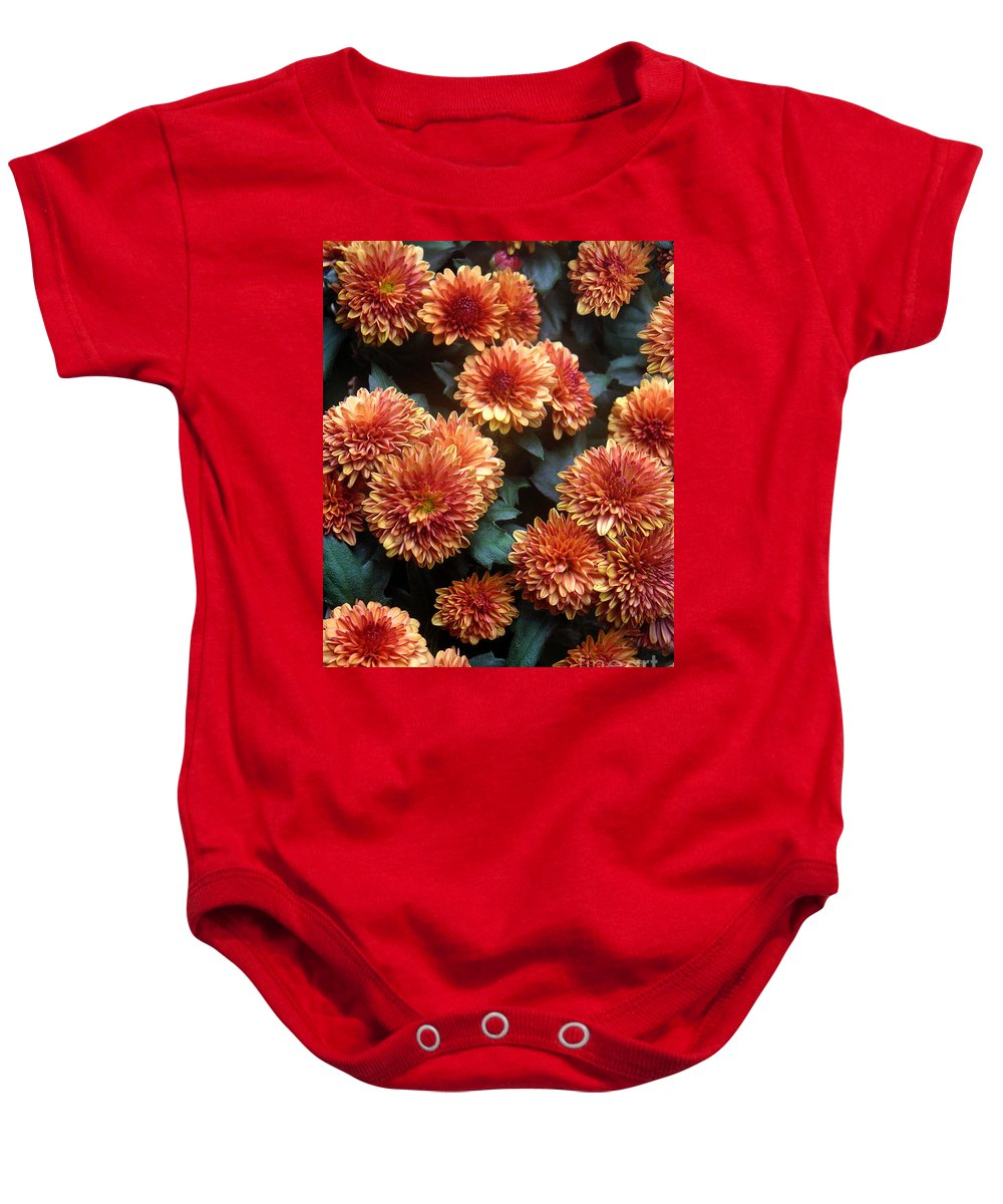 Nature Baby Onesie featuring the photograph Autumn Mums - A Group Portrait by Lucyna A M Green