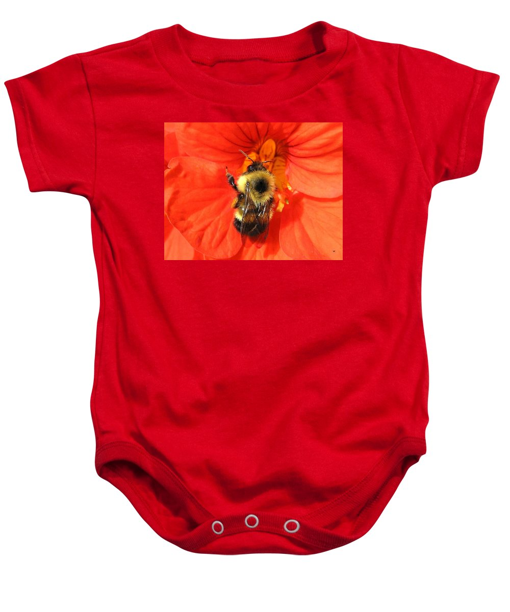 Bee Baby Onesie featuring the photograph Bee And Nasturtium by Will Borden