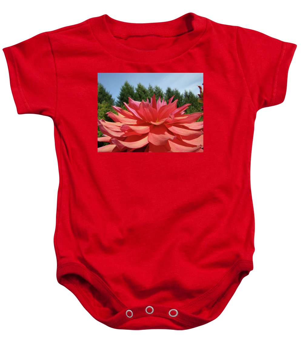 Dahlia Baby Onesie featuring the photograph Big Dahlia Flower Blooming Summer Floral Art Prints Baslee Troutman by Baslee Troutman