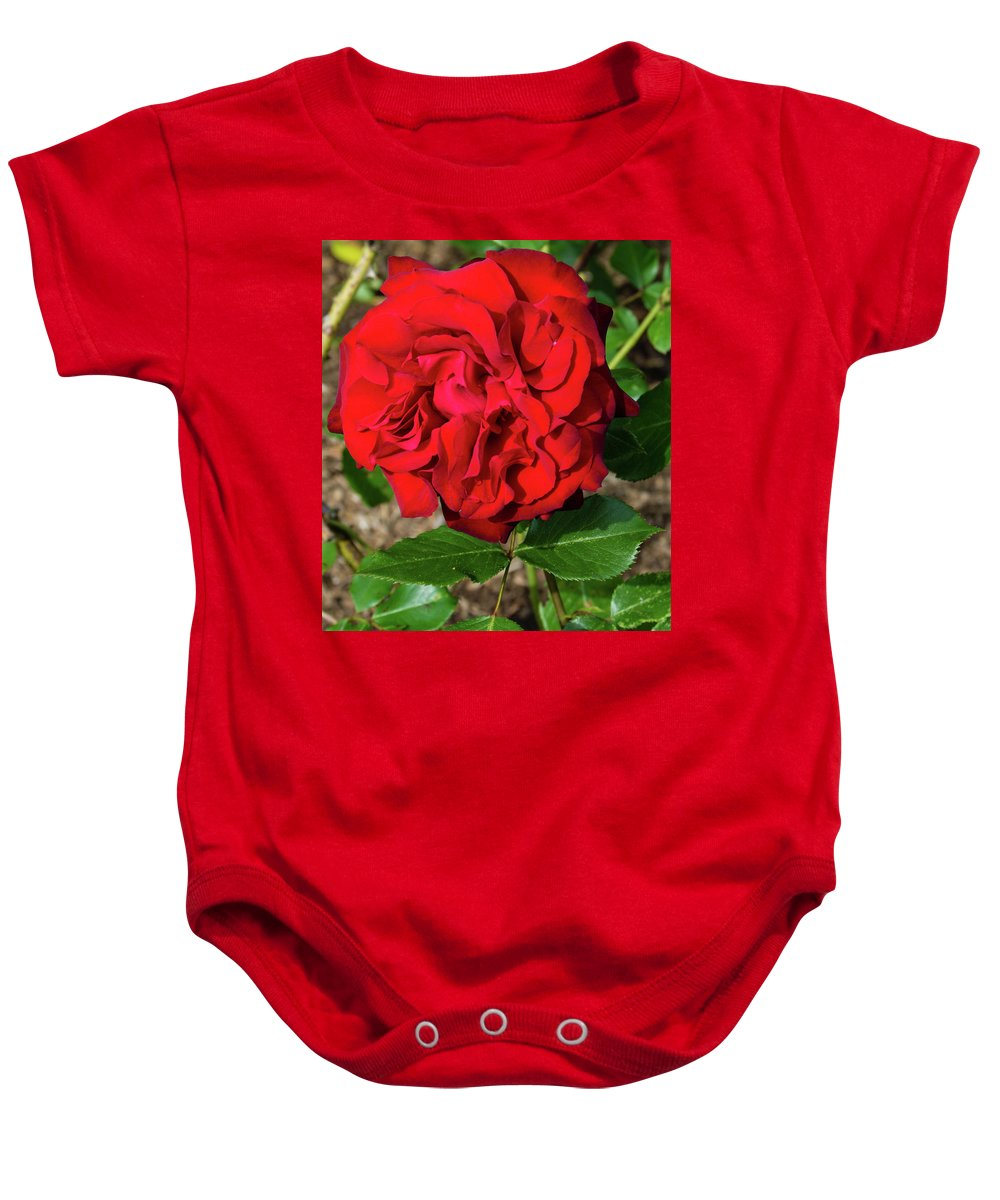 Black Cherry Rose Baby Onesie featuring the photograph Black Cherry by Robert Briggs