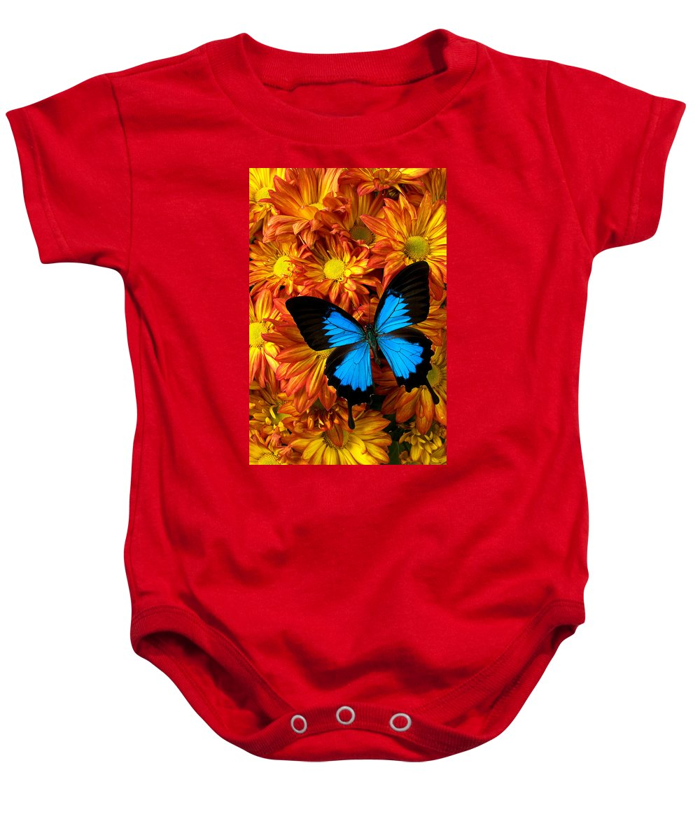 Butterfly Baby Onesie featuring the photograph Blue Butterfly On Mums by Garry Gay