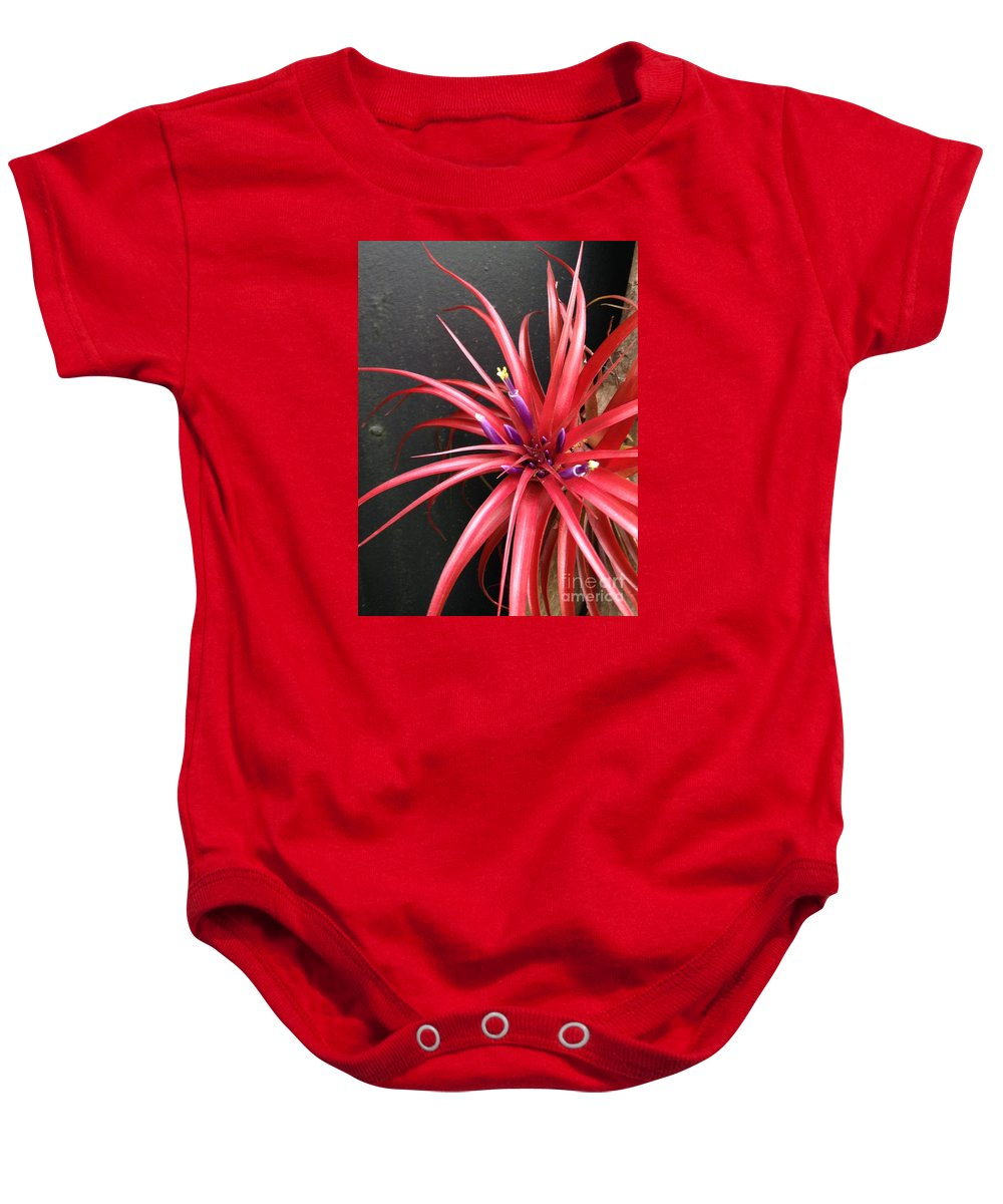 Botanical Baby Onesie featuring the photograph Burst by Dennis Knasel