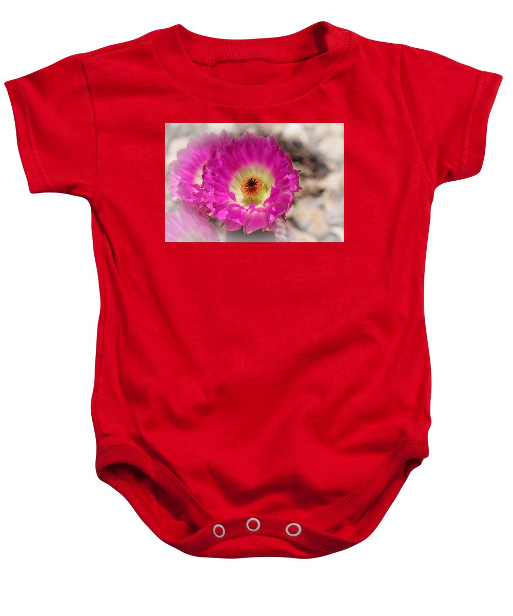 Cactus Baby Onesie featuring the photograph Cactus Flower by Skye Bloodgood