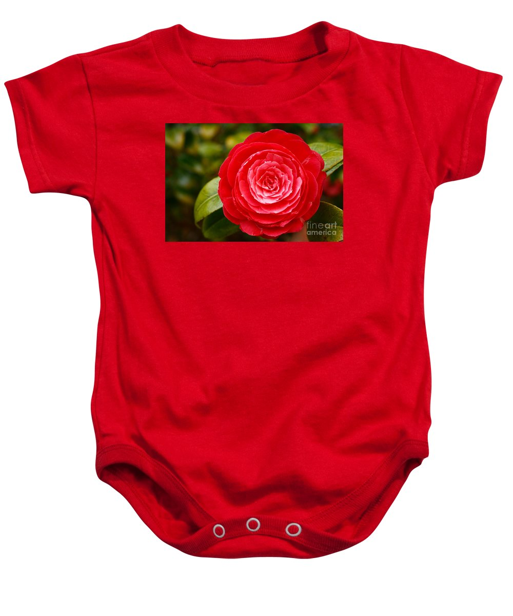 Azores Baby Onesie featuring the photograph Camellia Japonica by Gaspar Avila