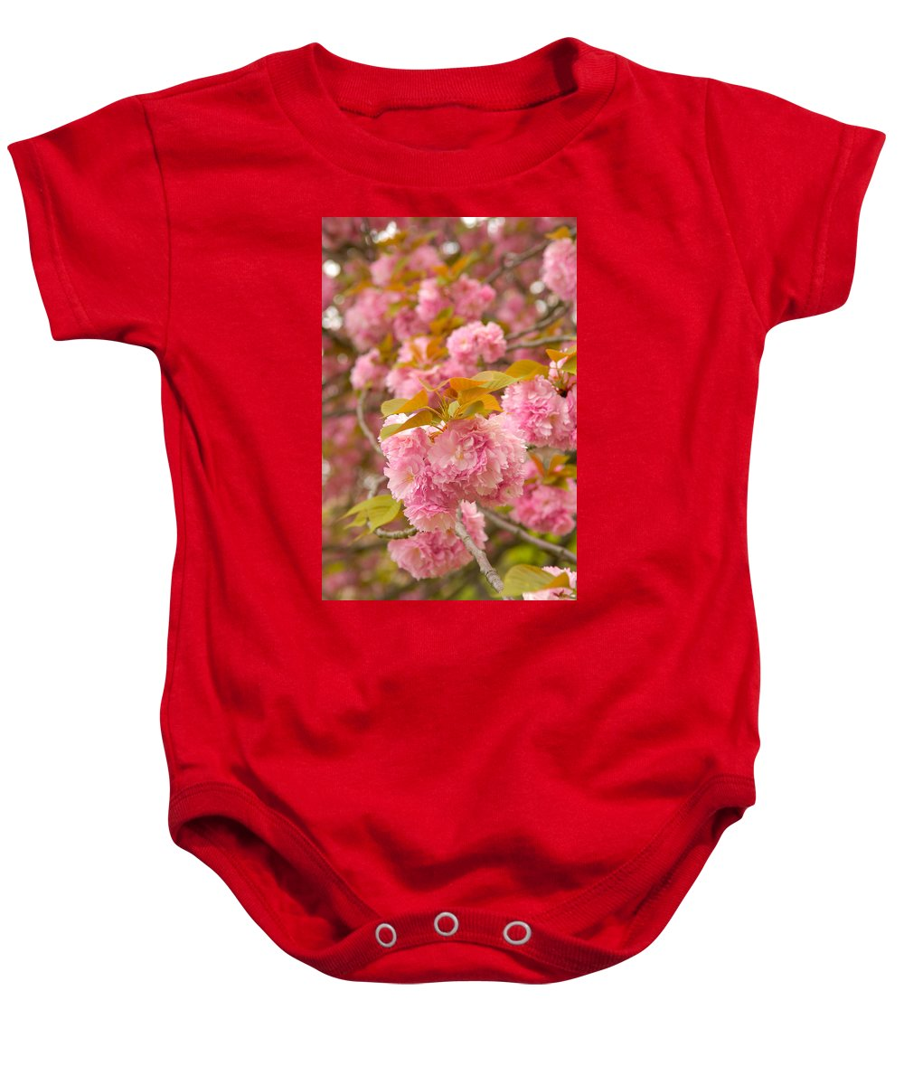 Cherry Baby Onesie featuring the photograph Cherry Blossom by Sebastian Musial