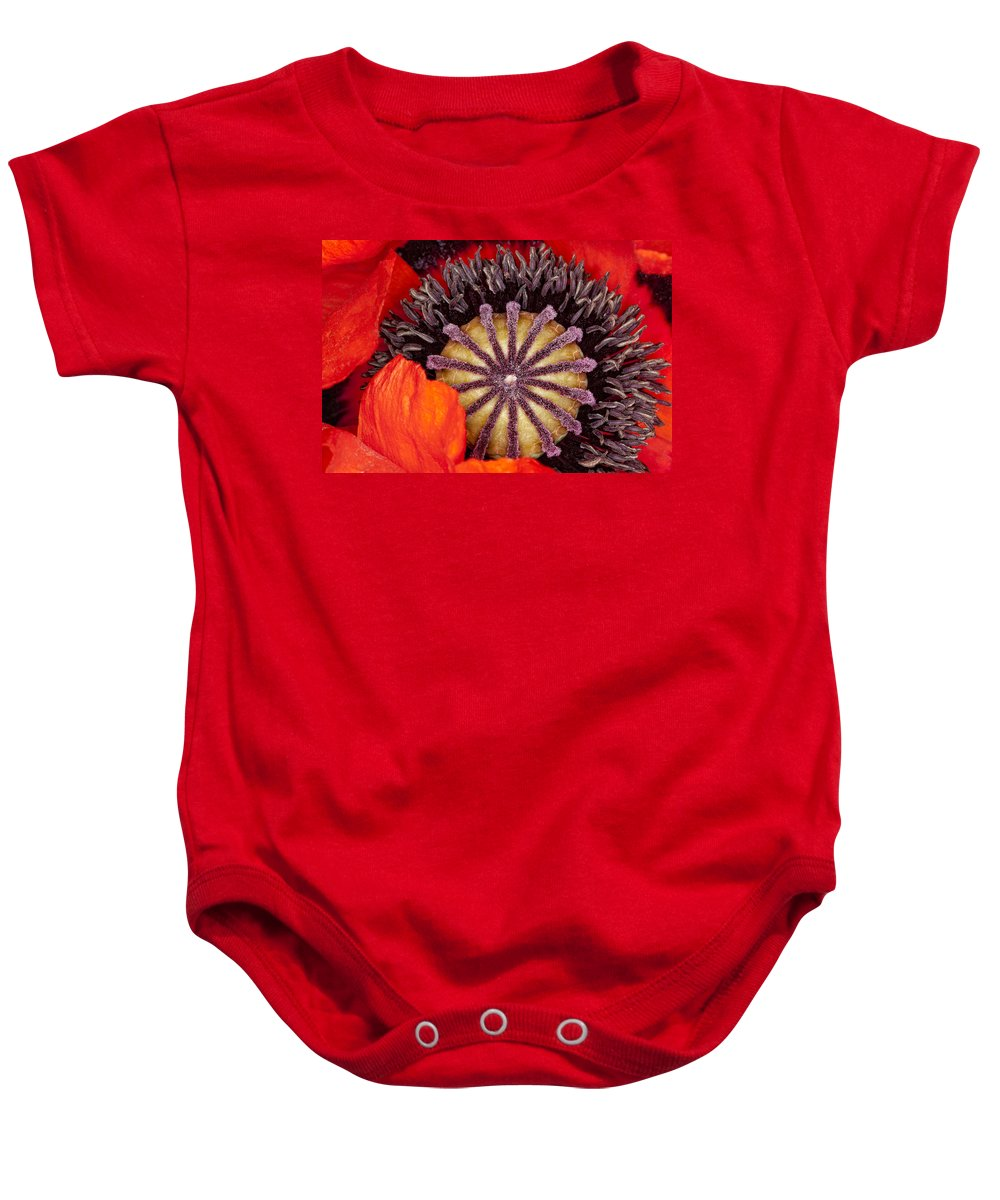 Flower Baby Onesie featuring the photograph Colorful Bloom by Janet Fikar