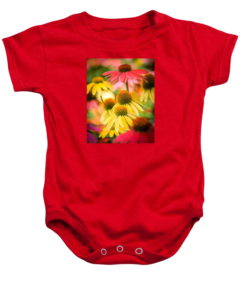 Cone Flower Daisy Outdoor Spring Colors Yellows Pink Nature Gardens Baby Onesie featuring the photograph Coneflower by Cindy Smiley