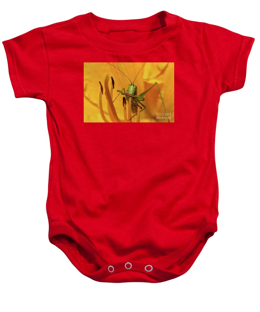 Bug Baby Onesie featuring the photograph Corn On The Cob by Lois Bryan