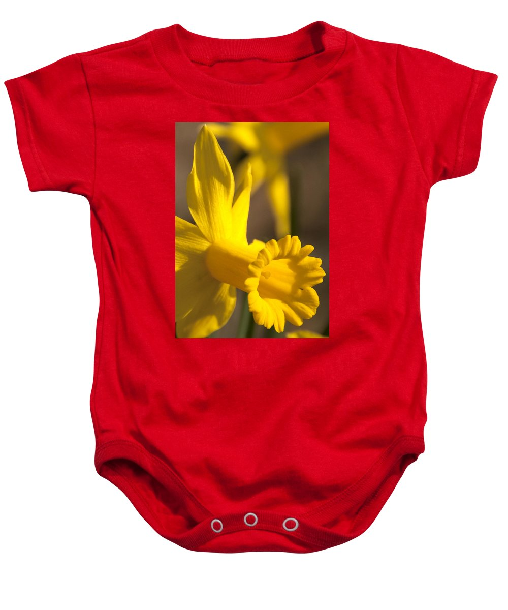 Daffodil Baby Onesie featuring the photograph Daffodil Yellow by Steven Natanson