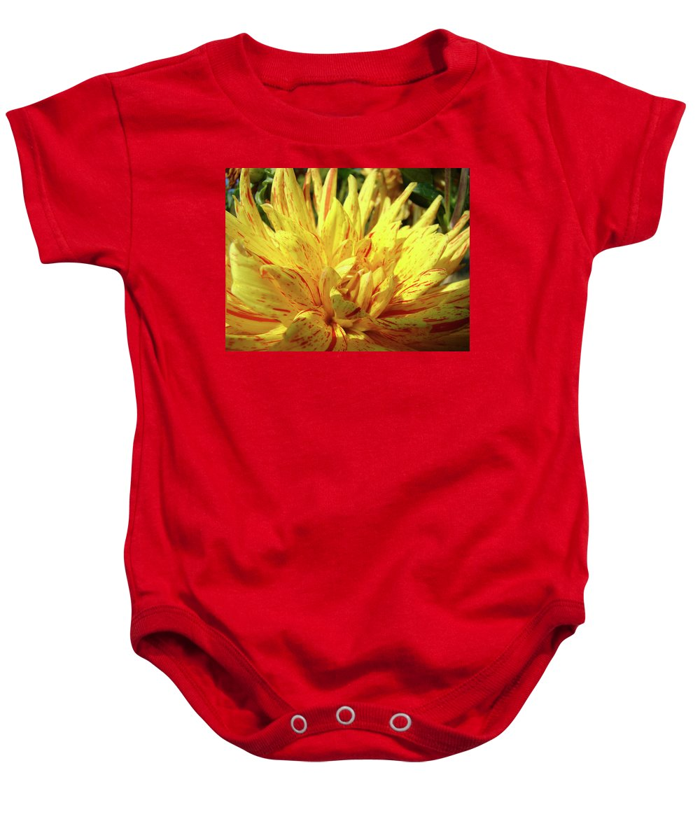 Dahlia Baby Onesie featuring the photograph Dahlia Flower Art Collection Giclee Prints Baslee Troutman by Baslee Troutman