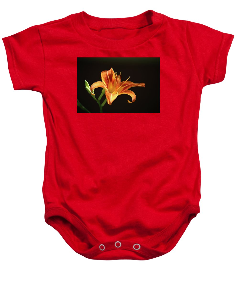 Lilies Baby Onesie featuring the photograph Day Lily by Theresa Campbell