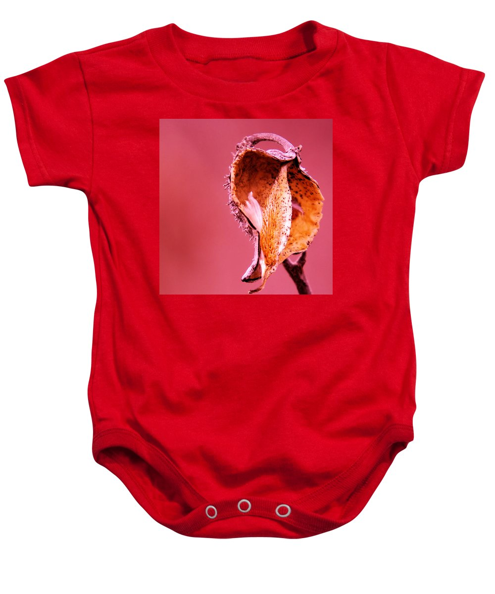 Autumn Baby Onesie featuring the photograph Empty Seed Pod by Jeff Swan