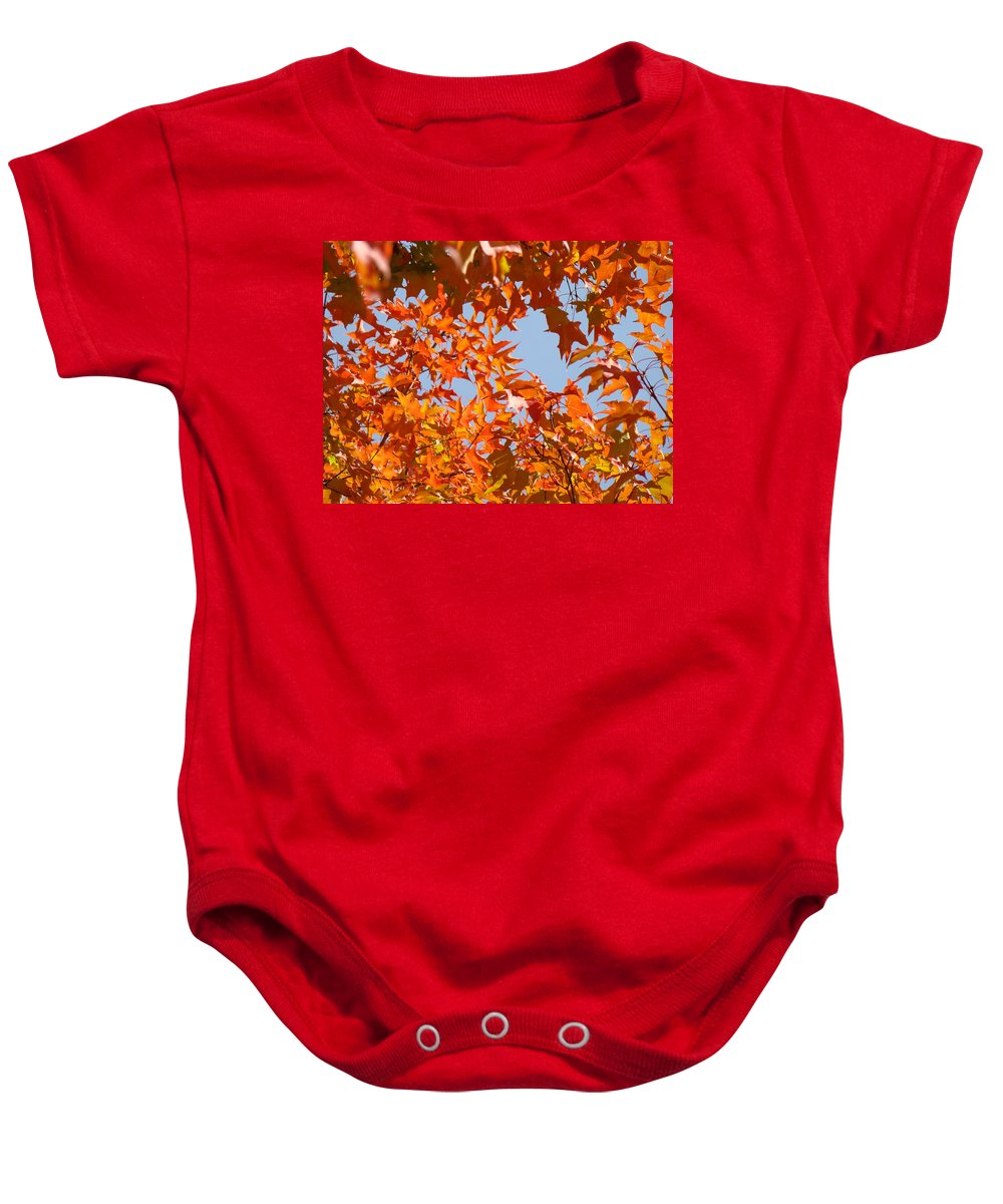 Autumn Baby Onesie featuring the photograph Fall Art Prints Orange Autumn Leaves Baslee Troutman by Baslee Troutman