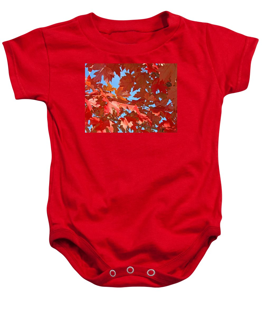 Autumn Baby Onesie featuring the photograph FALL TREE LEAVES Red Orange Autumn Leaves Blue Sky by Patti Baslee