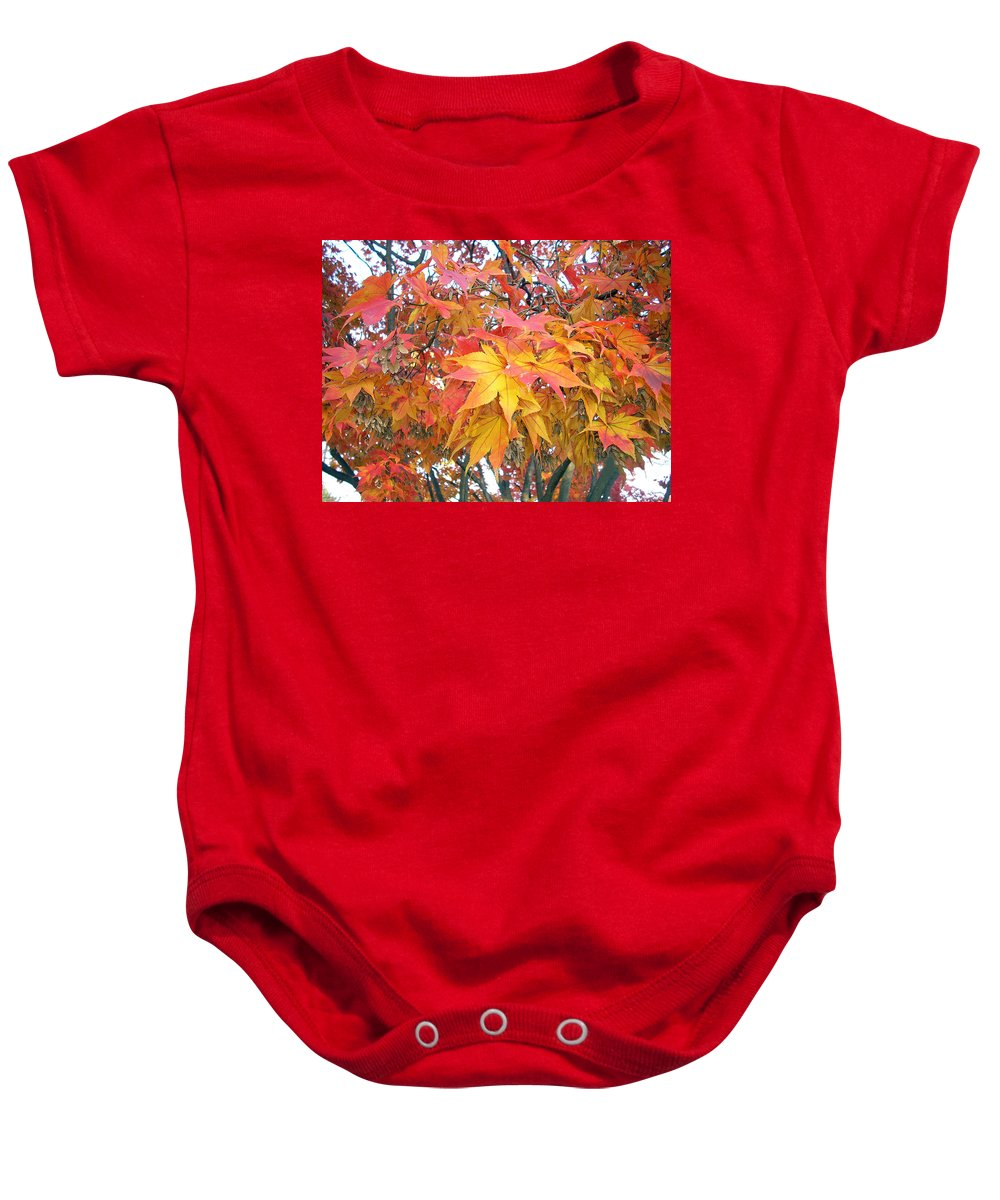 Fall Pictures Autumn Pictures Fall Leaves Painting Yellow Paintings Fall Colors Painting Greeting Card Painting Seasonal Painting Seasons Painting Botanical Painting Tree Painting Baby Onesie featuring the photograph Fantasy Of Fall by Karin Dawn Kelshall- Best