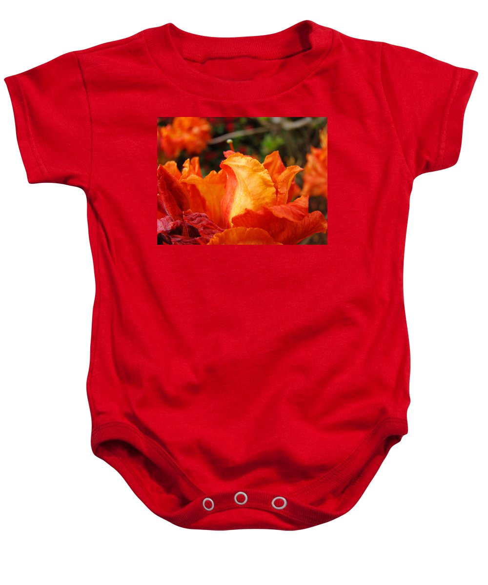 Azaleas Baby Onesie featuring the photograph Fine Art Prints Rhododendrons Floral Rhodies Baslee Troutman by Baslee Troutman