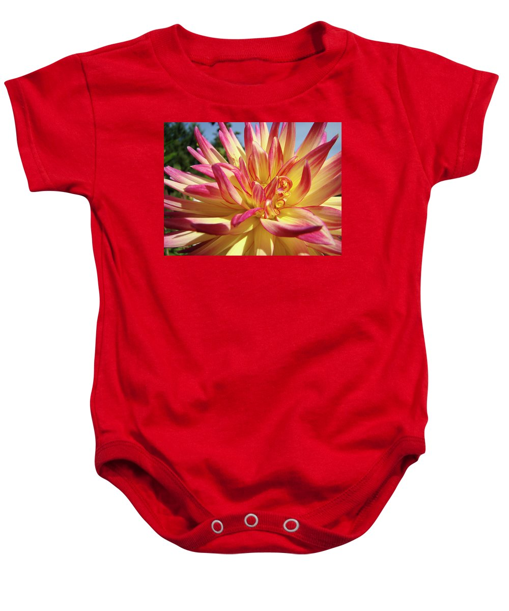 Dahlia Baby Onesie featuring the photograph Floral Art Prints Bright Dahlia Flower Canvas Baslee Troutman by Baslee Troutman