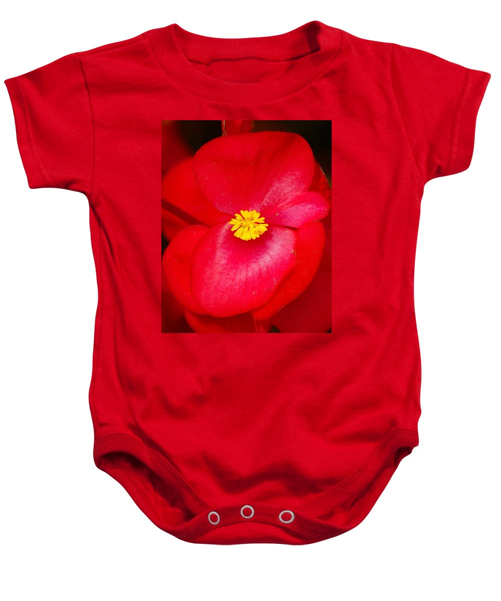 Flowers Baby Onesie featuring the photograph Flower 8 by Ben Upham III