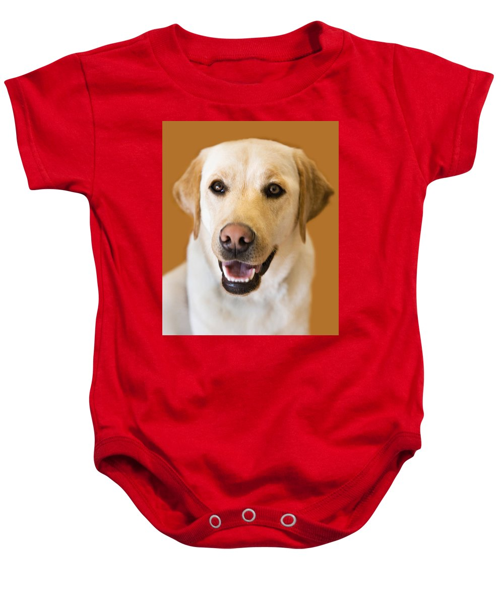 Lab Baby Onesie featuring the photograph Golden Lab by Marilyn Hunt