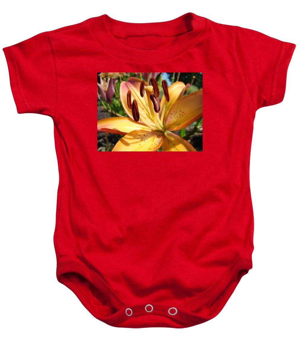 Lilies Baby Onesie featuring the photograph Golden Lily Flower Orange Brown Lilies Art Prints Baslee Troutman by Baslee Troutman
