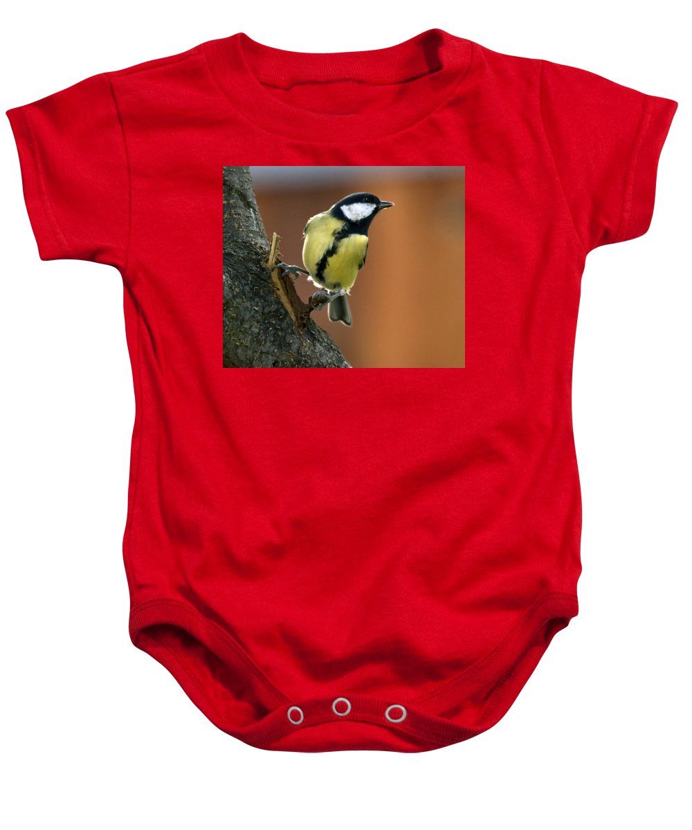 Great Tit Baby Onesie featuring the photograph Great Tit by Cliff Norton