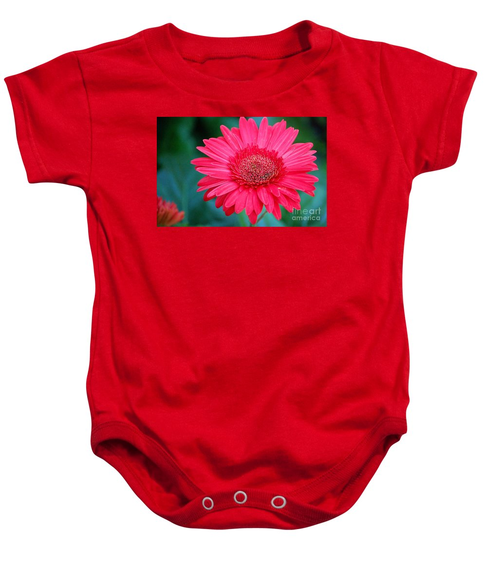 Gerber Daisy Baby Onesie featuring the photograph In the Pink by Debbi Granruth