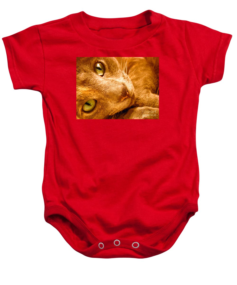 Cats Baby Onesie featuring the photograph Kitty by Amanda Barcon