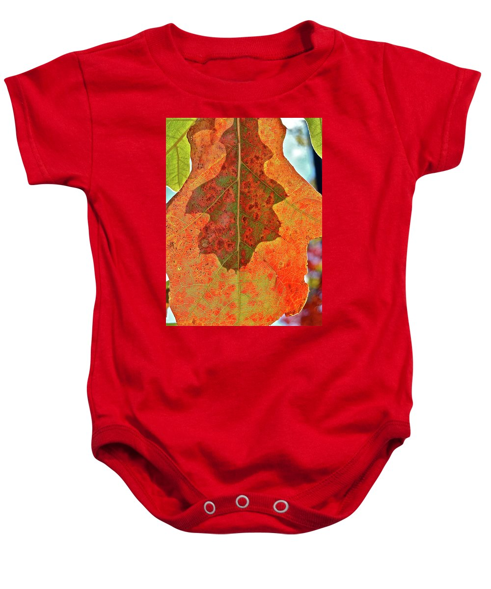 Nature Baby Onesie featuring the photograph Leaf Behind by Diana Hatcher