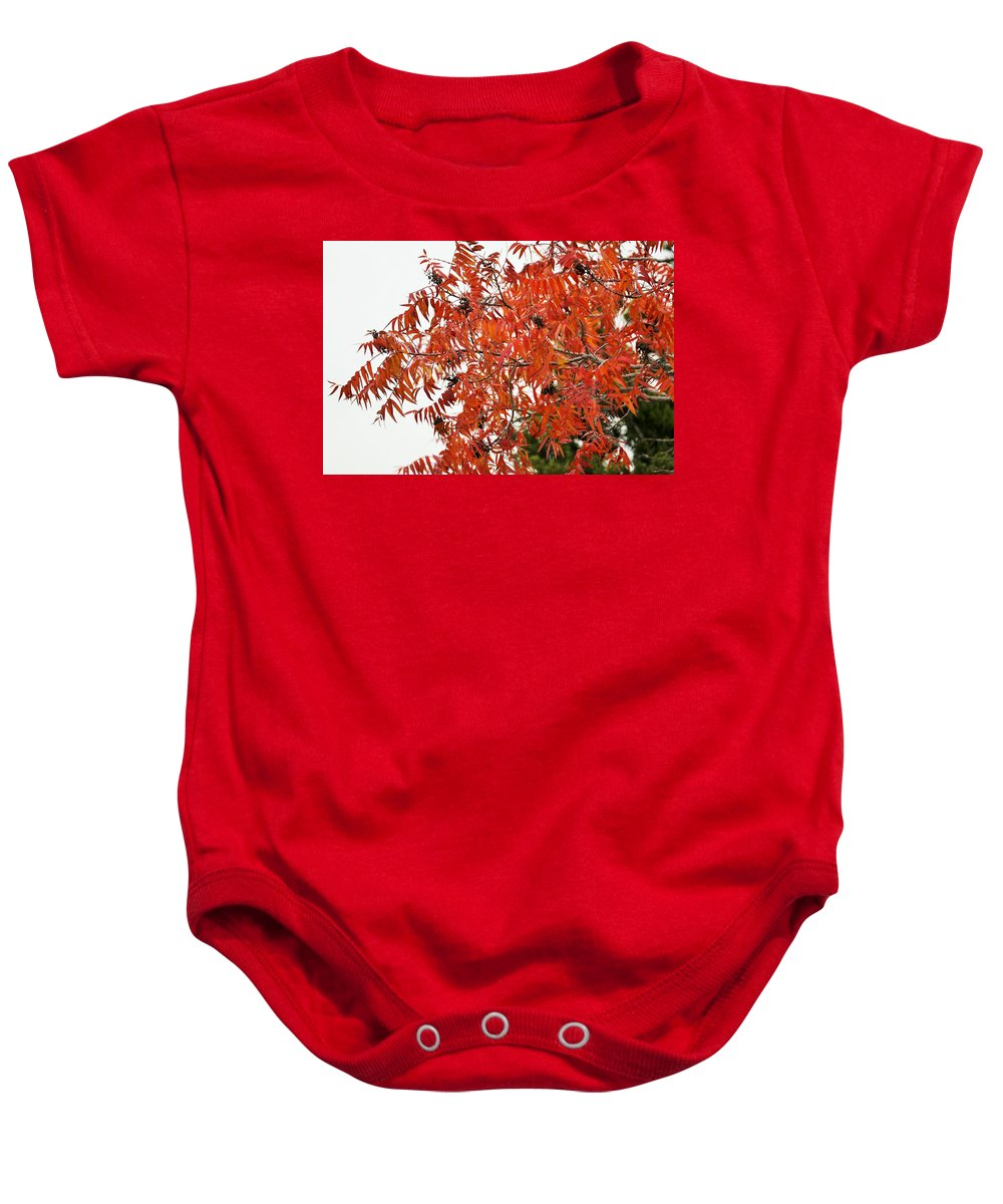 Baby Onesie featuring the photograph Leafs006 by Jeff Downs