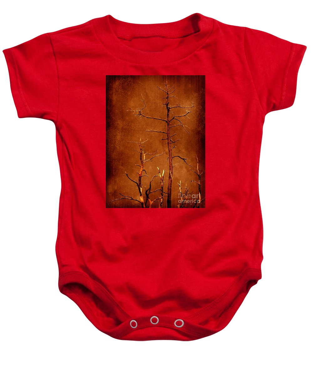 Dipasquale Baby Onesie featuring the photograph Left Bare and Broken by Dana DiPasquale