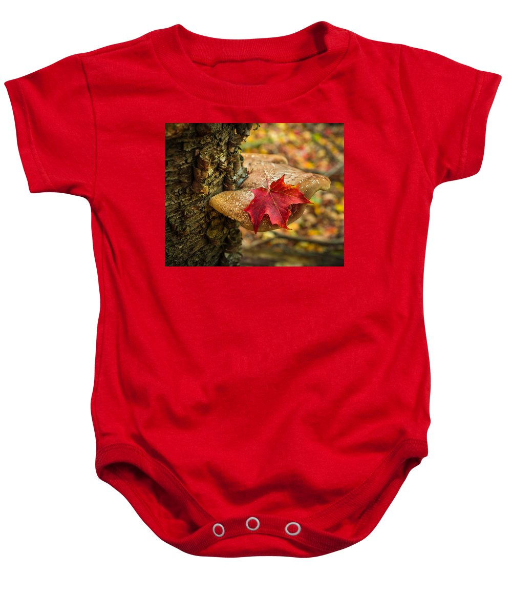 Fall Baby Onesie featuring the photograph Limited Shelf Life by Bill Pevlor