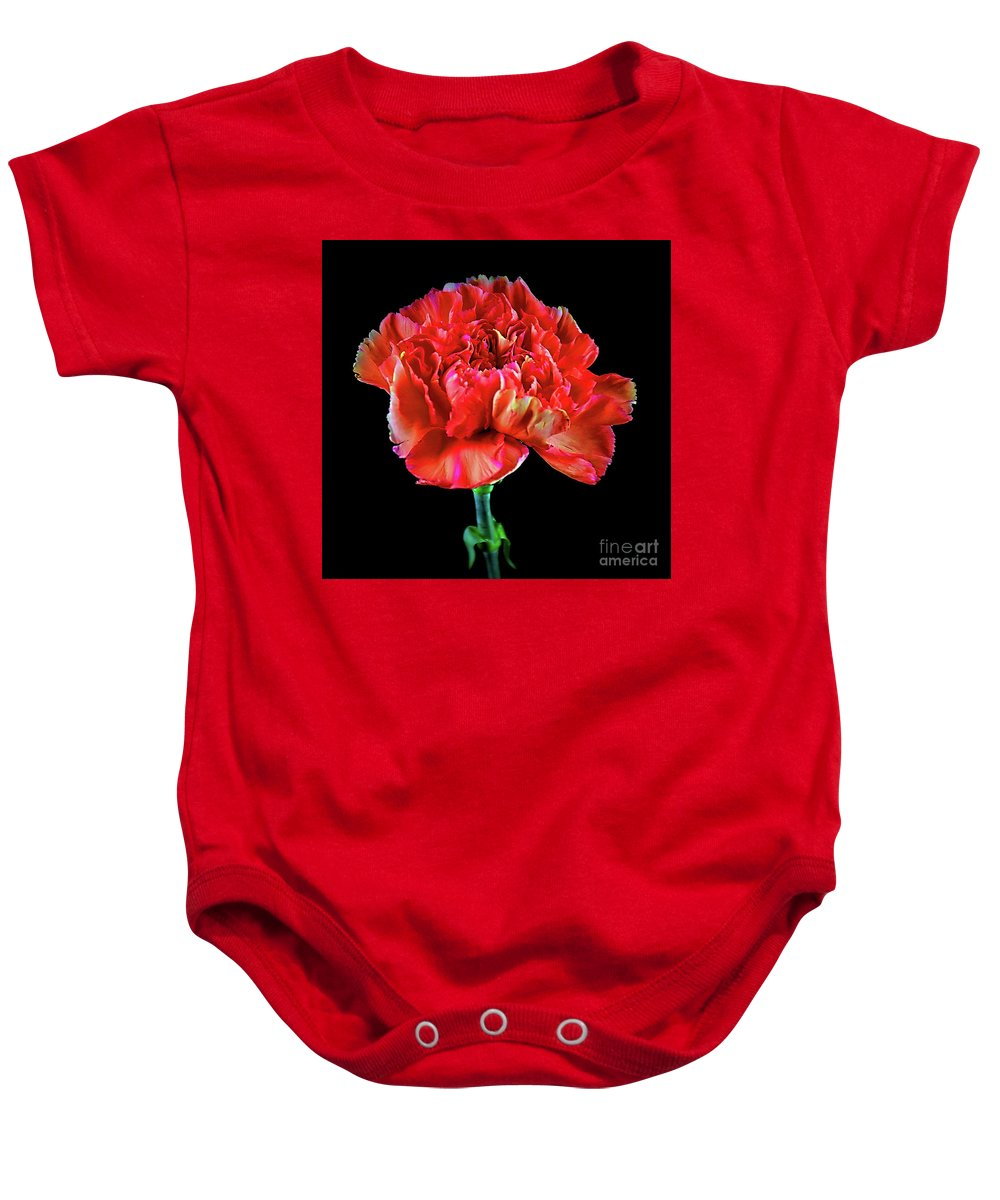 Lovely Carnation 12718-1 Baby Onesie featuring the photograph Lovely Carnation 12718-1 by Ray Shrewsberry