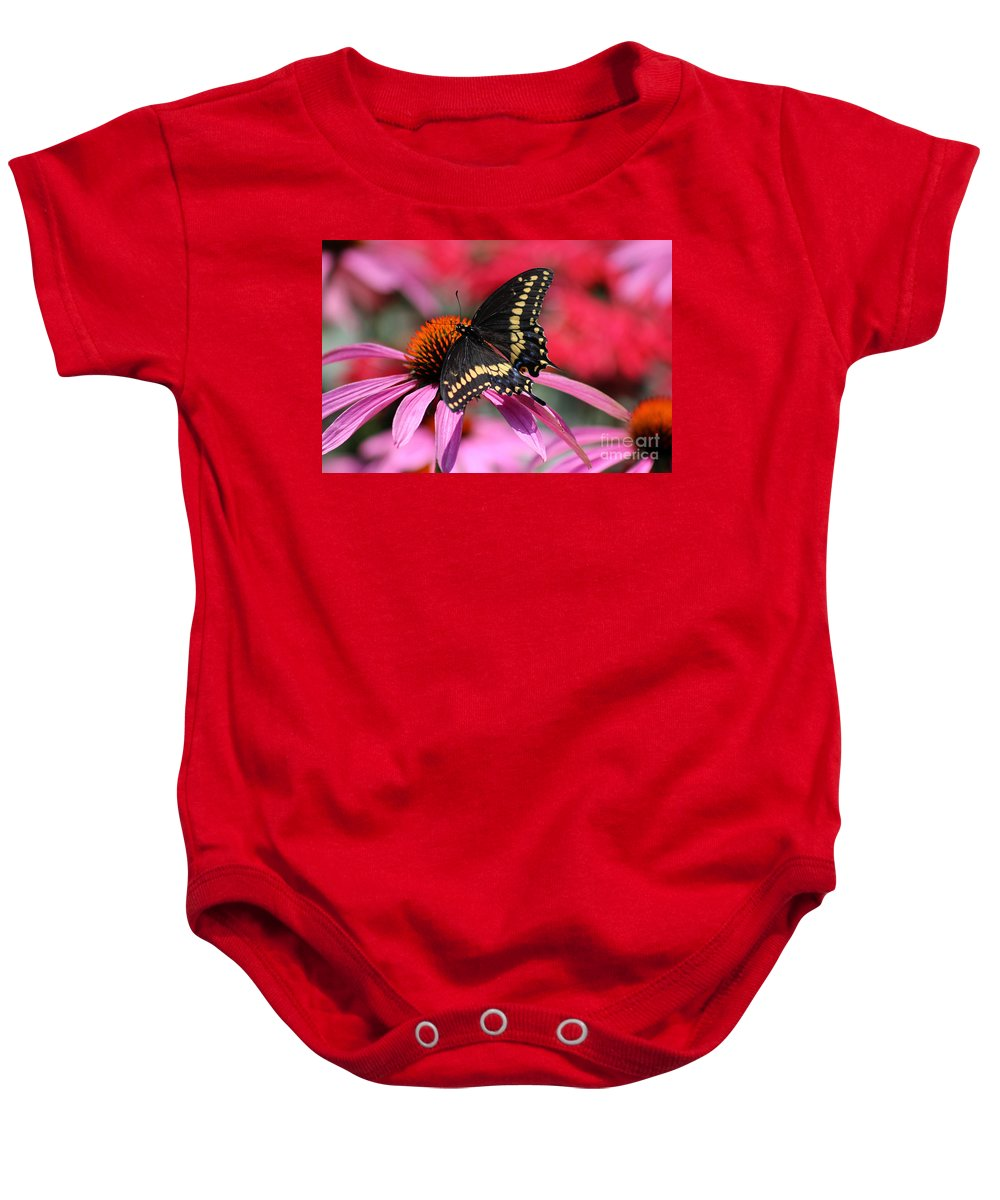 Insect Baby Onesie featuring the photograph Male Black Swallowtail Butterfly On Echinacea Plant by Karen Adams