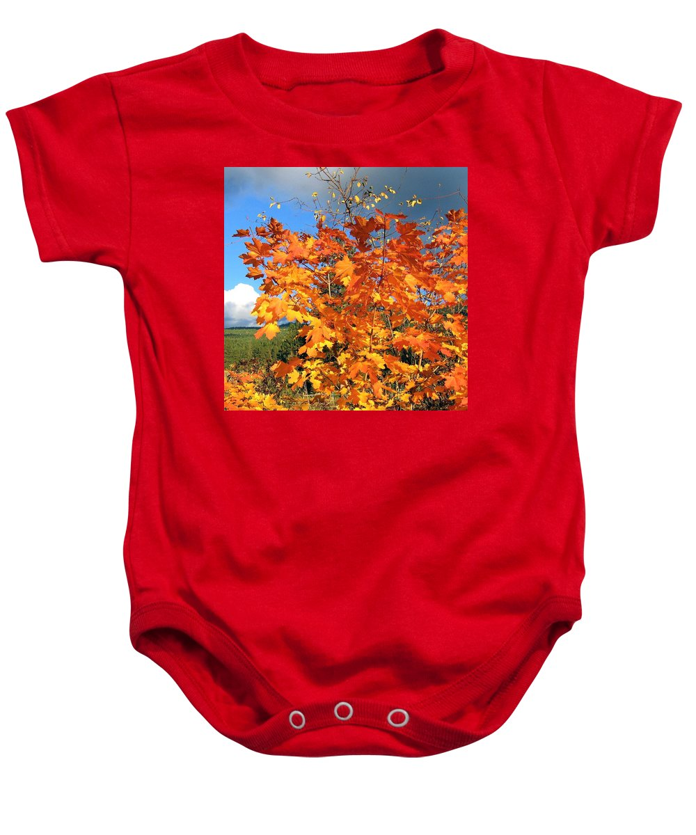Autumn Baby Onesie featuring the photograph Maple Mania 8 by Will Borden