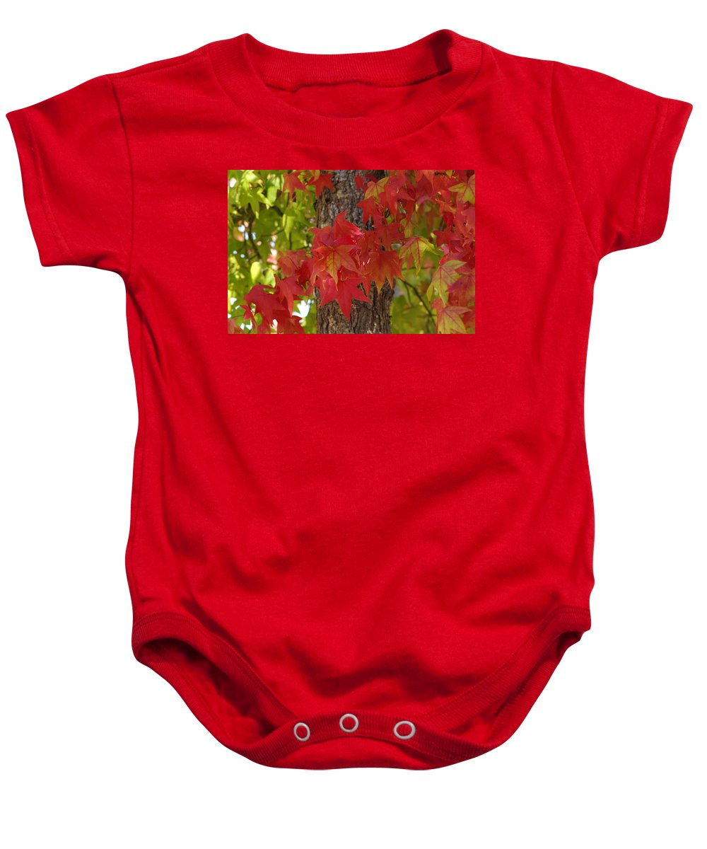 Fall Baby Onesie featuring the photograph Mother Nature's Style by Donna Blackhall