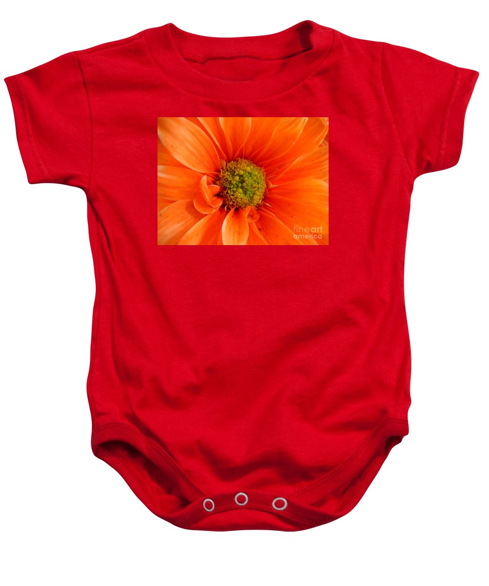 Nature Baby Onesie featuring the photograph Orange Daisy - A Center View by Lucyna A M Green