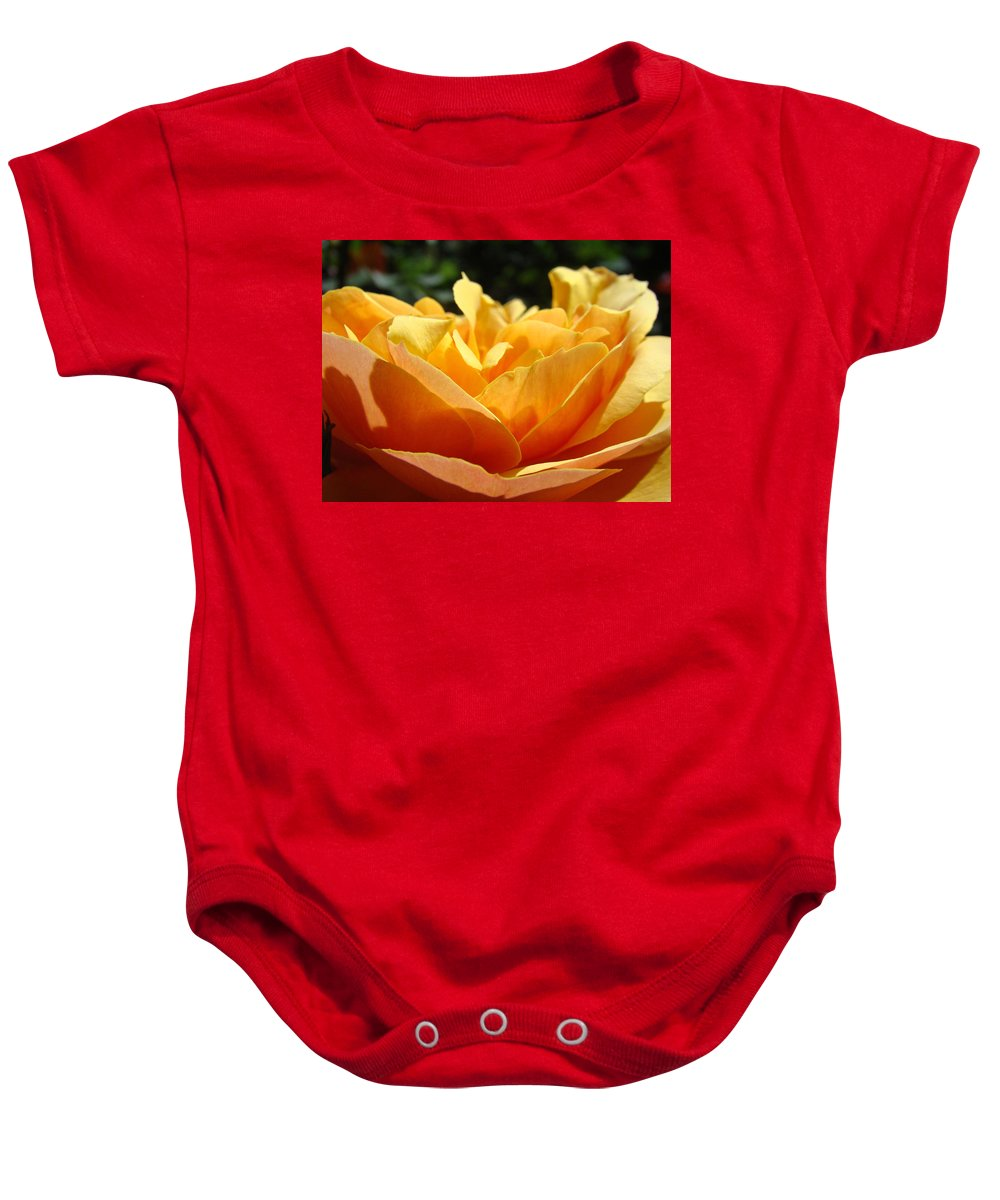 Rose Baby Onesie featuring the photograph Orange Rose Art Prints Baslee Troutman by Baslee Troutman