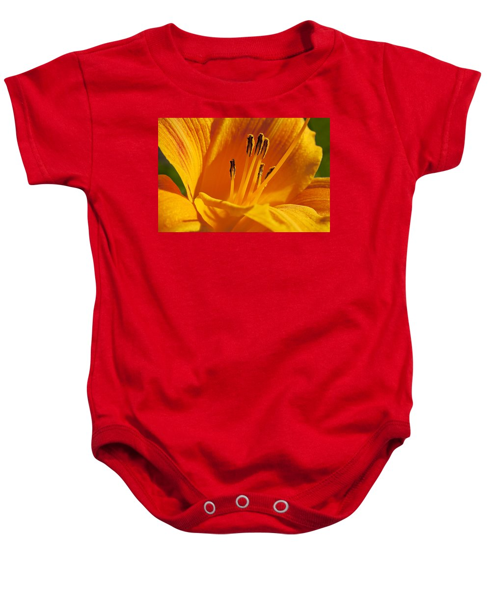 Flowers Baby Onesie featuring the photograph Orange Stamens by Kelley King
