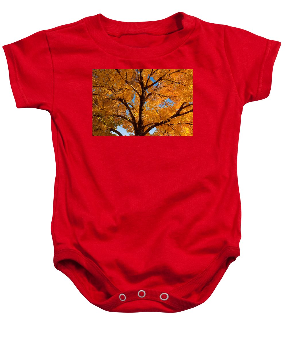 Country Baby Onesie featuring the photograph Perfect Autumn Day With Blue Skies by James BO Insogna