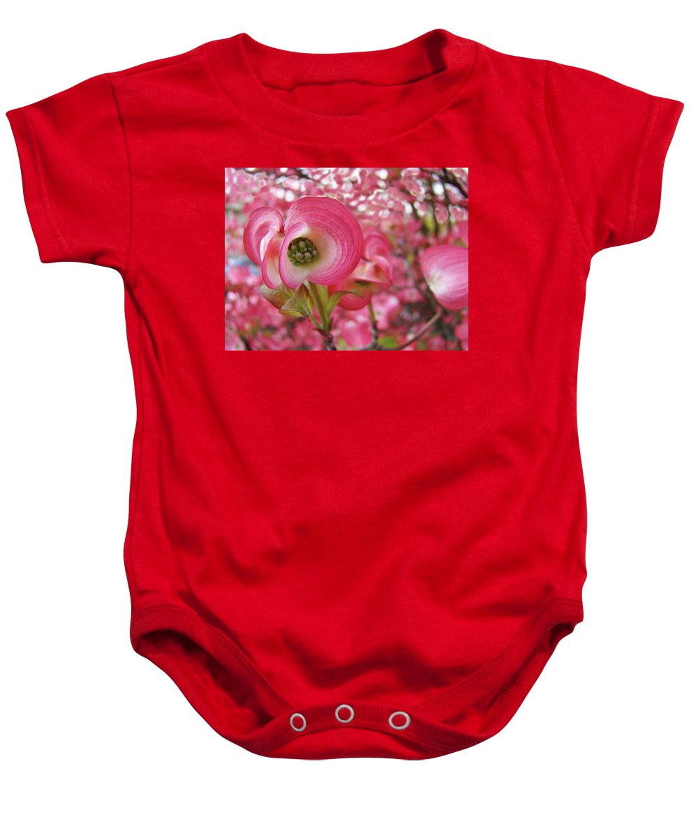 Dogwood Baby Onesie featuring the photograph Pink Dogwood Tree Flowers Dogwood Flowers Giclee Art Prints Baslee Troutman by Baslee Troutman