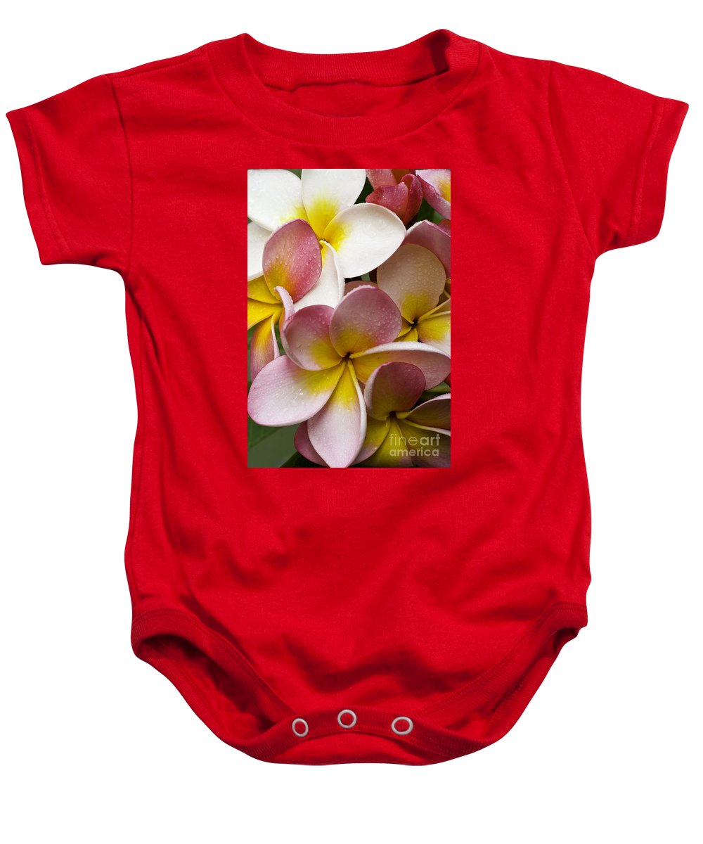 Pink Frangipani Baby Onesie featuring the photograph Pink Frangipani by Sheila Smart Fine Art Photography