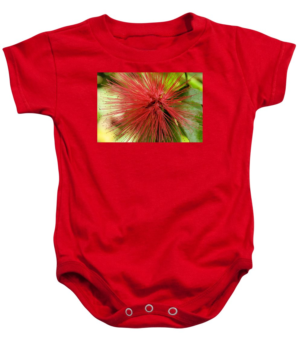 Flower Baby Onesie featuring the photograph Pink Fringe by Wendy Fox